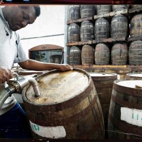 Distillerie Depaz, Martinique - 2014