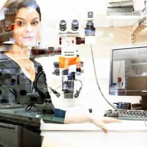 SANDRA SANFILIPPO - Biologie du développement UPMC CNRS INSERM