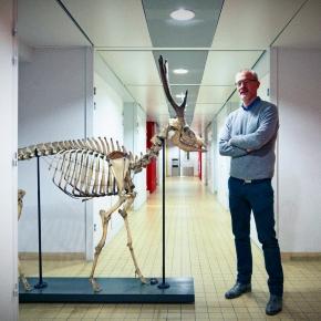 SANTIAGO ARAGON - Biologie animale / Collection de Zoologie UPMC