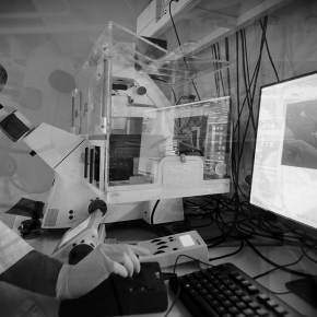neuroscience-paris-seine-paris-2017