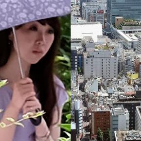 """""""Tokyo - 2017"""" (série diptyques)"""